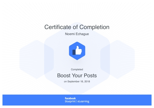 Boost Your Posts_ Blueprint Certificate
