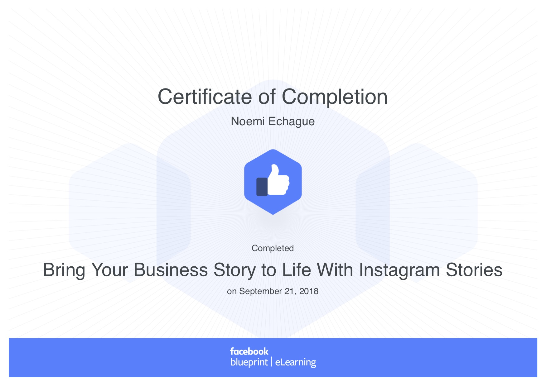 Bring Your Business Story to Life With Instagram Stories_ Blueprint